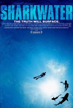 Sharkwater1