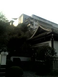 駒場、民芸館とコンクリート東大