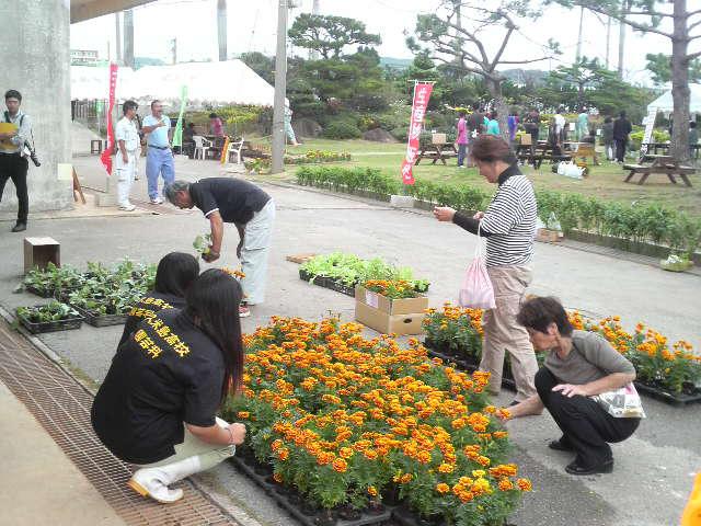 久米島高校園芸科の花と野菜の苗即売会