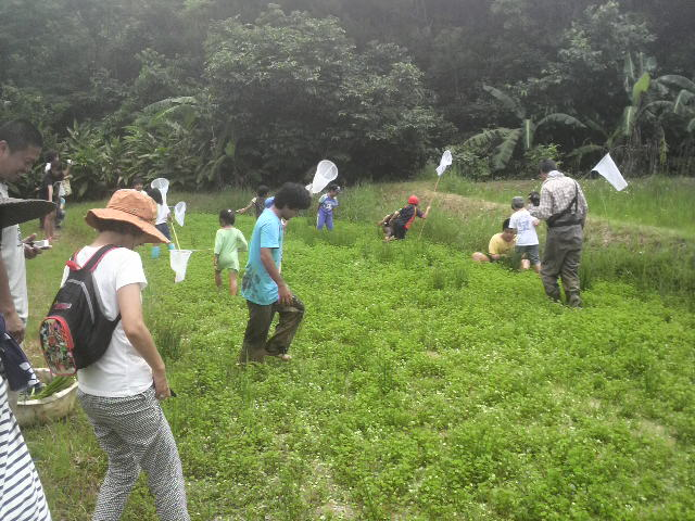 田んぼ作りと田植え
